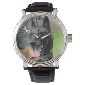 Smiling Belgian Malinois Dog Wrist Watch
