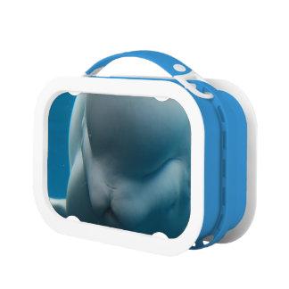 Smiling Beluga Whale Lunchbox