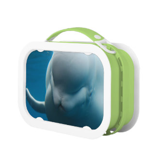 Smiling Beluga Whale Yubo Lunchbox