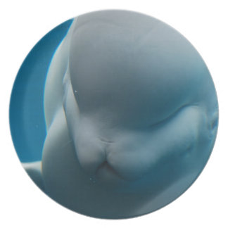 Smiling Beluga Whale Party Plates