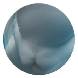Smiling Beluga Whale Party Plate