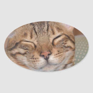 Smiling Bengal Oval Sticker