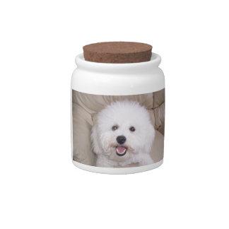 Smiling Bichon Frise Dog Treat Candy Jar