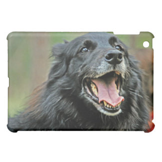 Smiling Black Dog on a Green Bokeh Background iPad Mini Covers