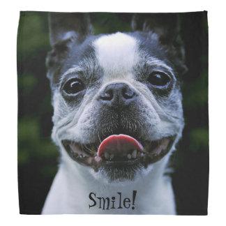 Smiling Boston Terrier Bandana