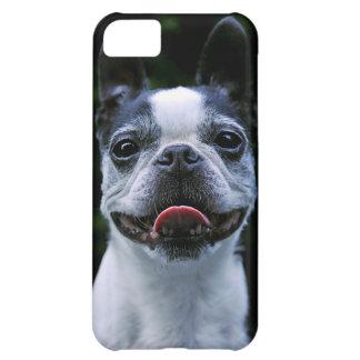 Smiling Boston Terrier iphone 5 Case