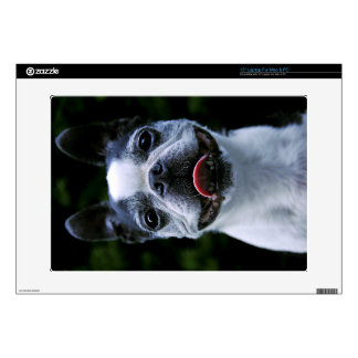 Smiling Boston Terrier Laptop Skin