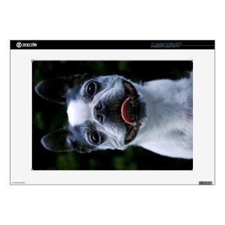 Smiling Boston Terrier Laptop Skin