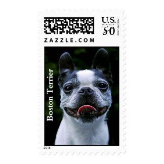 Smiling Boston Terrier Postage