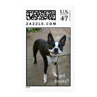 Smiling Boston Terrier stamp
