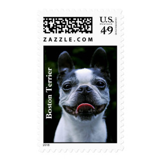 Smiling Boston Terrier Stamps