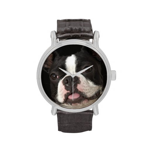 Smiling Boston terrier with collar Watches