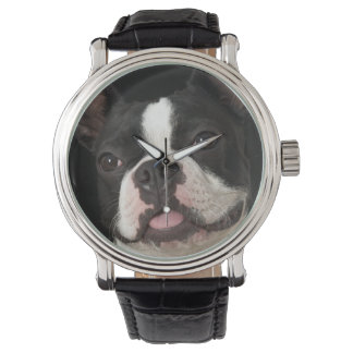 Smiling Boston terrier with collar Wristwatch