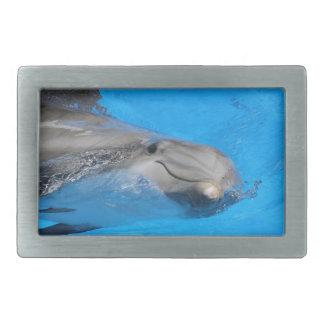 Smiling Bottlenose Dolphin Belt Buckles
