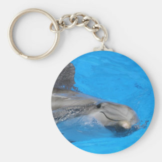 Smiling Bottlenose Dolphin Keychains