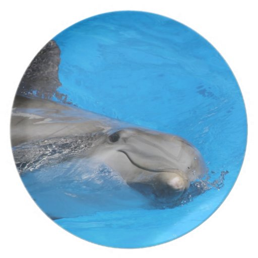 Smiling Bottlenose Dolphin Party Plates