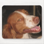 Smiling Brittany Spaniel Mouse Pad