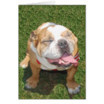 Smiling Bulldog Stationery Note Card