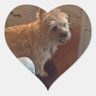 Smiling Cairn Terrier Heart Sticker