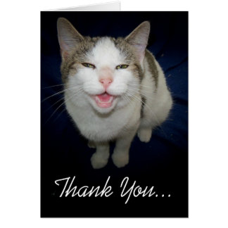 Smiling Cat Thank You Card