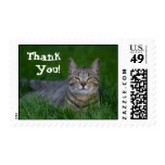 Smiling Cat Thank You Stamp