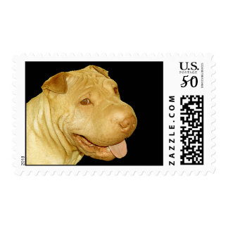 Smiling Chinese Shar Pei Puppy Dog Postage
