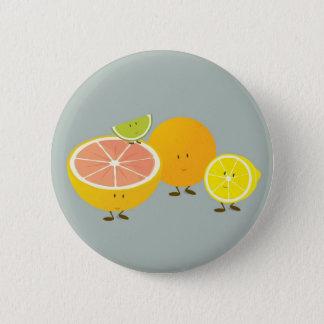 Smiling citrus group illustration button
