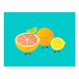 Smiling citrus group postcard