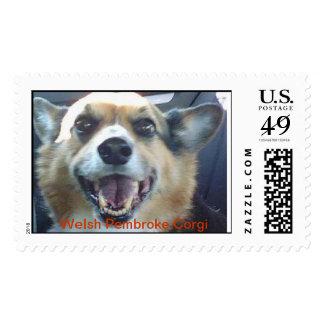 Smiling Corgi Dog Postage