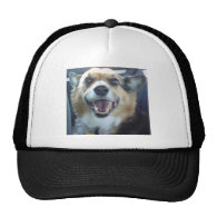 Smiling Corgi Hat