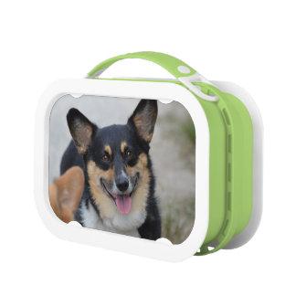 Smiling Corgi Yubo Lunchbox