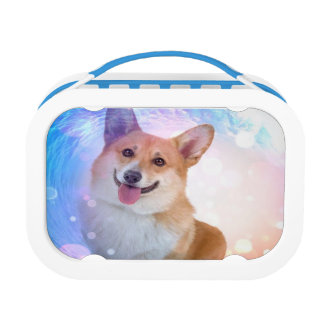 Smiling Corgi with Wave Lunch Box