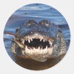 Smiling Crocodile Sticker