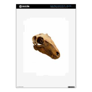 Smiling dinosaur. iPad 3 skin
