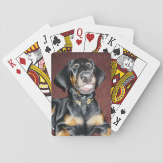 Smiling Doberman Puppy Playing Cards