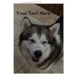 Smiling Dog Greeting Card