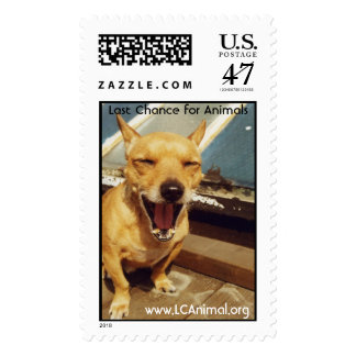 Smiling Dog Postage