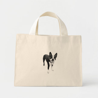 smiling doggie bag