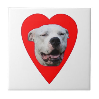 Smiling Dogo Argentino Ceramic Tile