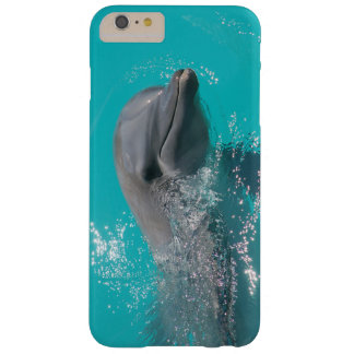 Smiling Dolphin Barely There iPhone 6 Plus Case