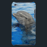 "Smiling Dolphin Barely There iPod Cover<br><div class=""desc"">With such a happy dolphin you&#39;re sure to be smiling all day!!!</div>"