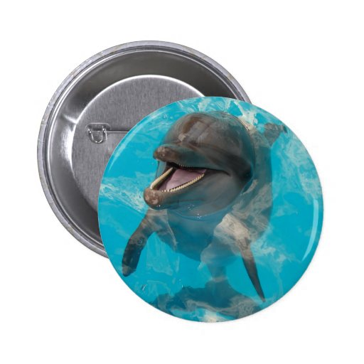 Smiling Dolphin Button