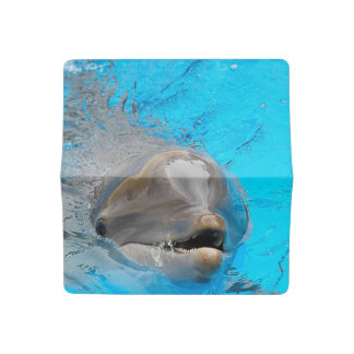 Smiling Dolphin Checkbook Cover