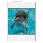 Smiling Dolphin Greeting Cards