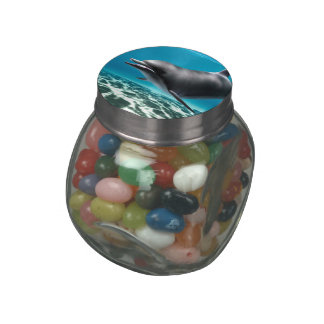 Smiling Dolphin Jelly Belly Candy Jars