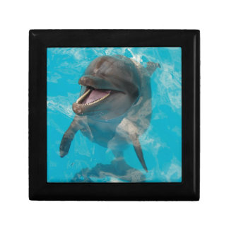 Smiling Dolphin Keepsake Box