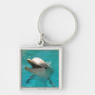 Smiling Dolphin Keychain