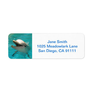 Smiling Dolphin Label