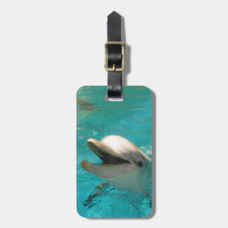 Smiling Dolphin Luggage Tag