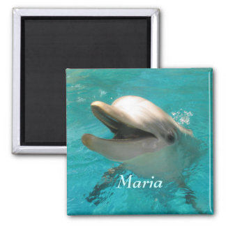 Smiling Dolphin Refrigerator Magnets